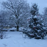 Winterlandschaft2_c_LisaIwon_ArcheWarder