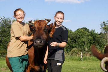 2. Lehrjahr (Tierpflege)
