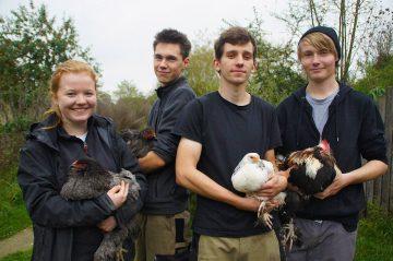 3. Lehrjahr (Tierpflege)