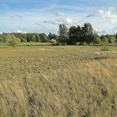 © Naturpark Westensee Obere Eider e.V.